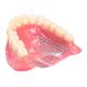 アクリル床義歯